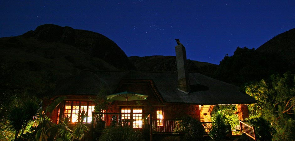 Forest Creek Lodge Night Sky